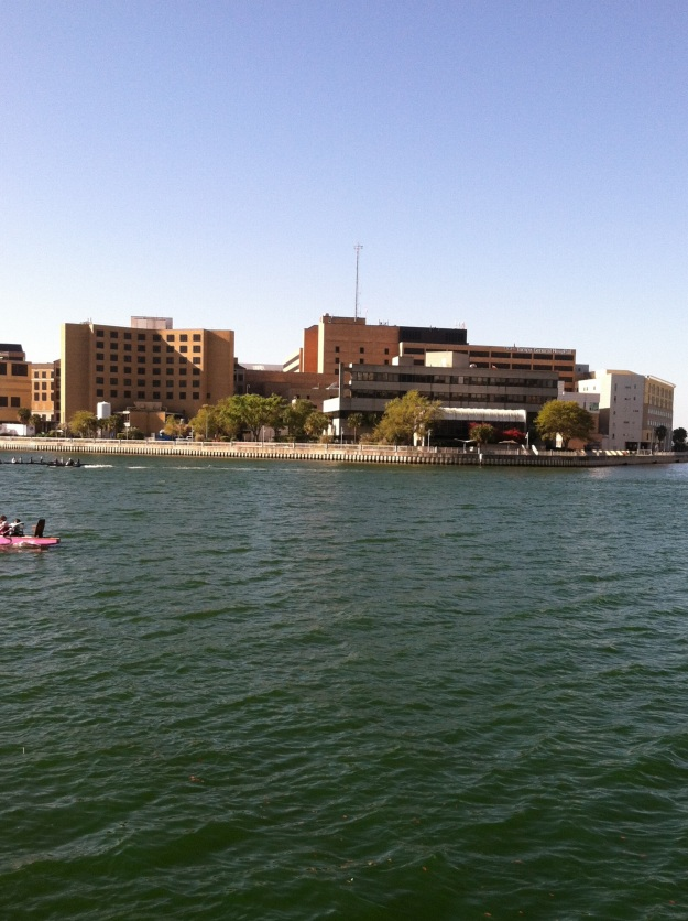 Hospital with a view.  Seen from across the Hillsborough River on the Riverwalk.