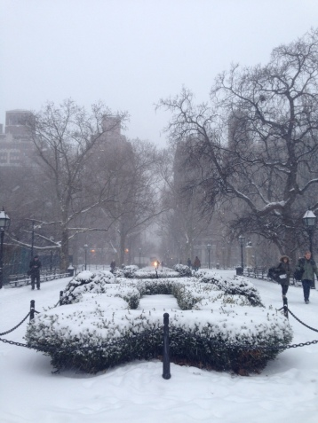 Snow in New York City Photo credit: Emilia Navarro